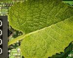 호라이존 유럽, 디지털 및 녹색 전환을 위한 연구과제 지원 계획