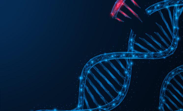 혈액 내 종양 DNA 검출을 위한 음향 기술 활용
