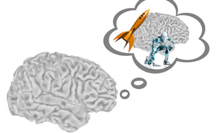 의사결정과정 내 메타 인지(metacognition)의 역할