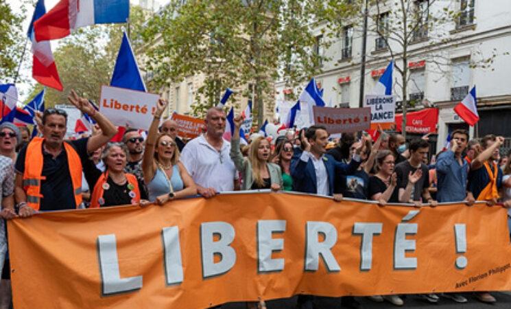 PaCE 프로젝트, 유럽의 포퓰리즘과 민주주의 연구